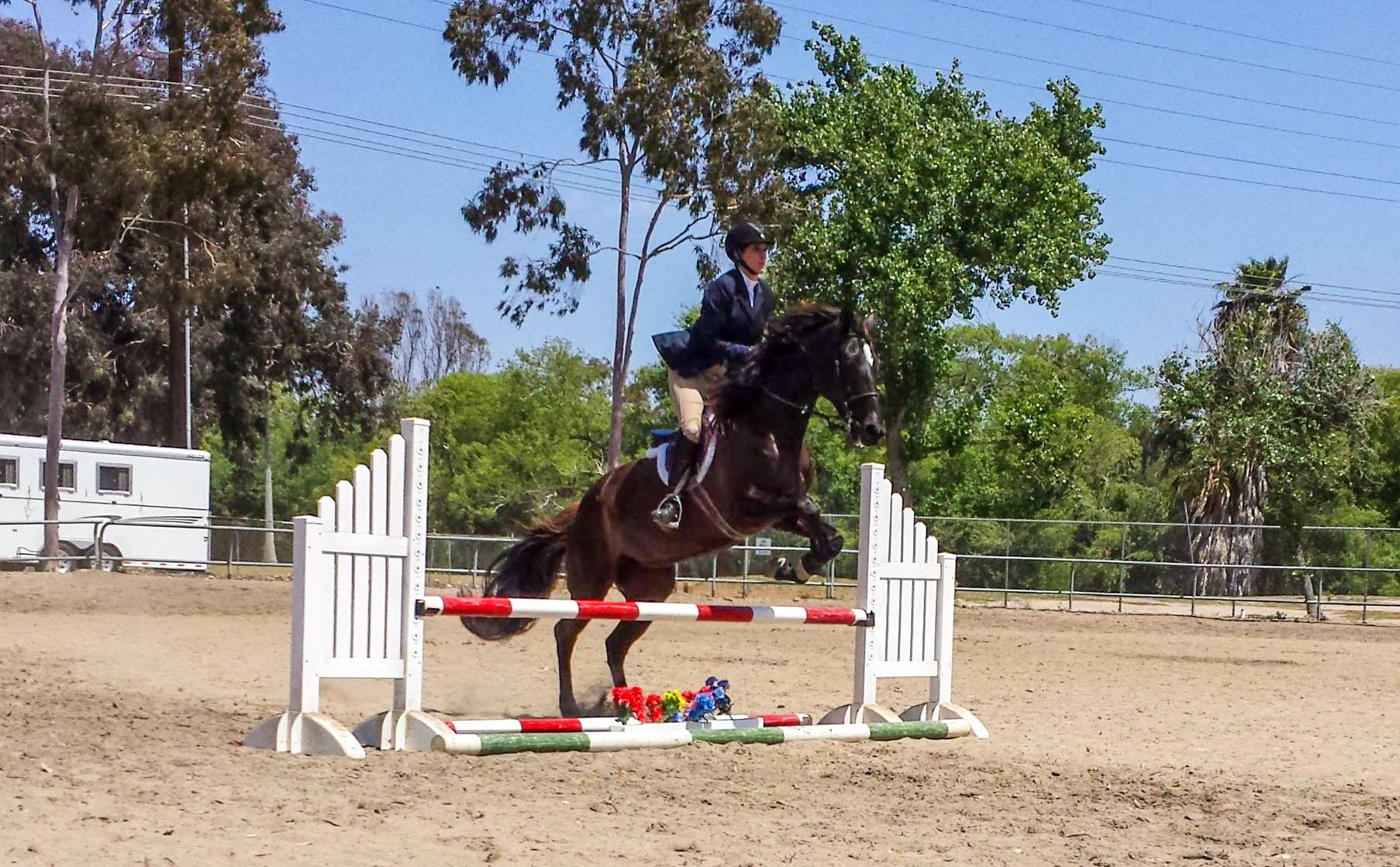 emily-ruocco-training-show-jumping