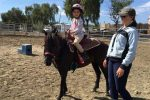 Emily Ruocco Equestrian Training and Lessons