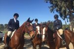 emily-ruocco-events-horse-shows